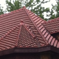 Reptilian Roofs of St. Paul